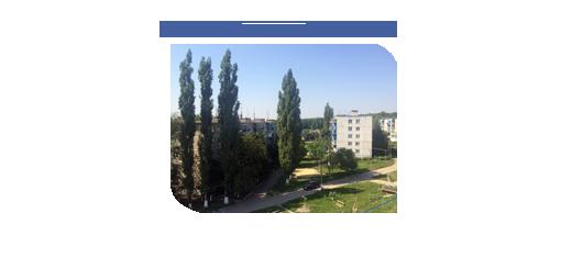 образец протокола общего собрания работников учреждения